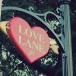 taste love lane
